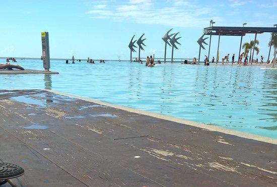 Cairns Esplanade Swimming Lagoon: photo0.jpg