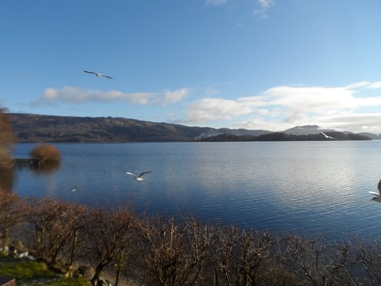 A view from Colquhoun's Restaurant at the Lodge on Loch Lomond