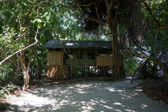 Selous Mbega Camp: our tent