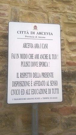 Avacelli Φωτογραφία