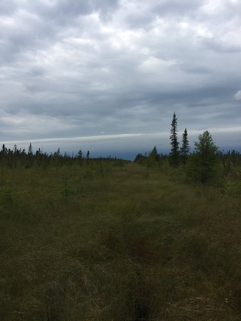 Waskish, MN: Big Bog State Recreation Area