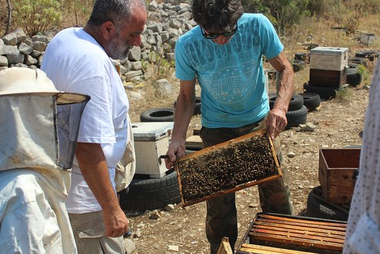 In the Heart of the Mountains: We visited a beekeeper