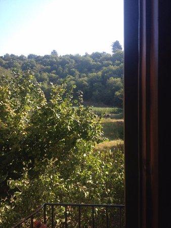 Agriturismo e Ristorante Sanvitale: La vista dalla nostra camera