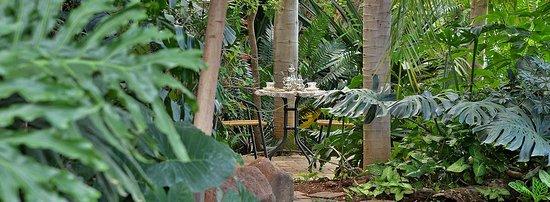 Kasane Self Catering: Stunning gardens!