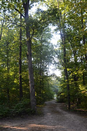 Columbia, Nueva Jersey: Wooded area