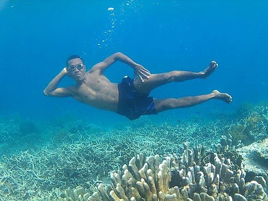 Tambrauw, Индонезия: Keindahan bawah lautnya yang membuat tampilan foto sangat memukau