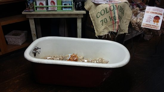 Monteagle, TN: Items displayed in old tub.