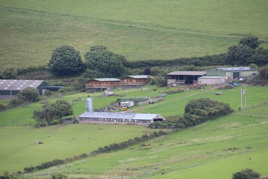 Springbank Farm Lodges: view of lodges from other side of valley
