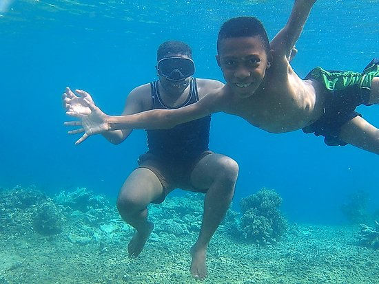 Tambrauw, Индонезия: View bawah laut pulau amsterdam