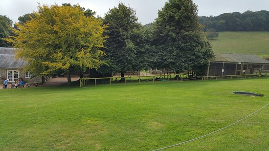 Wroxall, UK: 20160905_132720_large.jpg