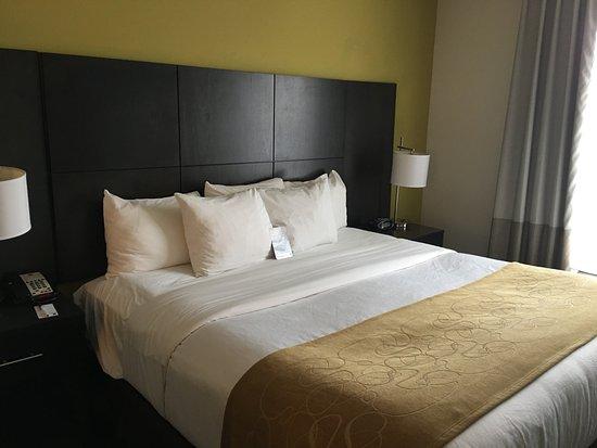 Comfort Suites Miami Airport North: Cama king