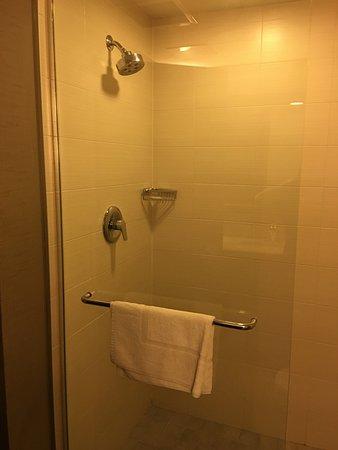 Comfort Suites Miami Airport North: Ducha
