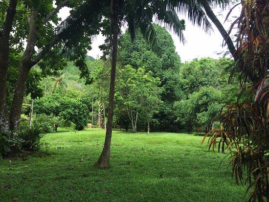 DoceLunas Hotel, Restaurant & Spa: Green areas