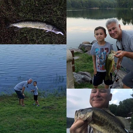 Waymart, PA: The fishing was good and fun