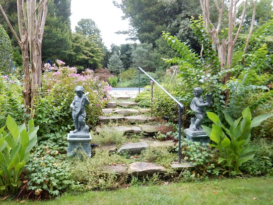 A Butler's Manor: THE GARDENS TO THE POOL