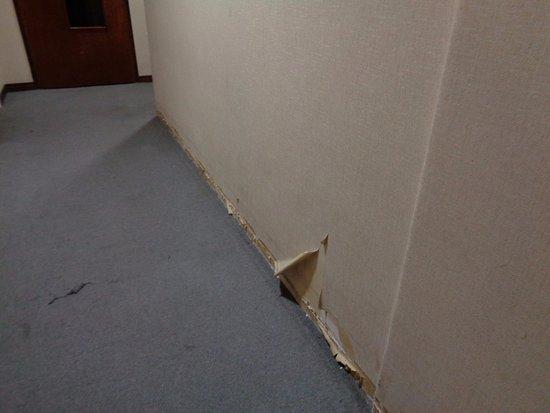 Hotel 8 de Octubre: Pasillo del edificio
