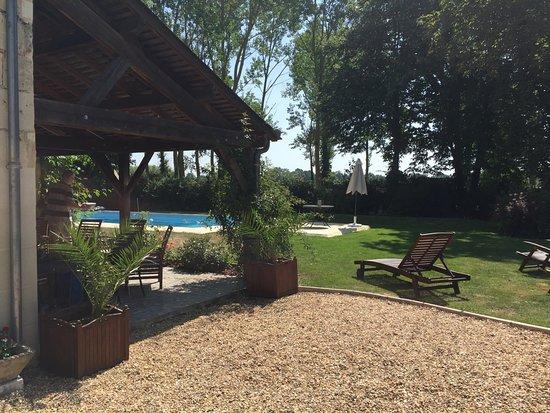 Varennes sur Loire, Francia: Garden and pool area.