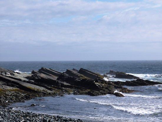 Irish Loop - Mistaken Point shores