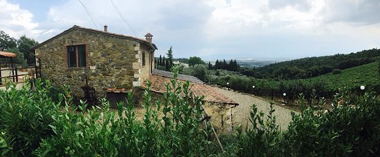Take Me Out in Tuscany : This was at a family owned farm/winery in Chianti.