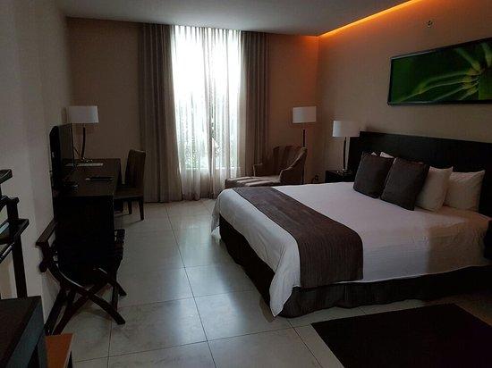 Studio Hotel: 20160902_160534_large.jpg