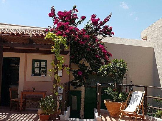Villa Archanes Traditional Cretan House