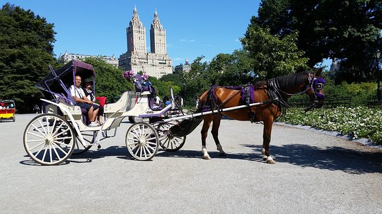 ‪Central Park Horse & Carriage Tour‬