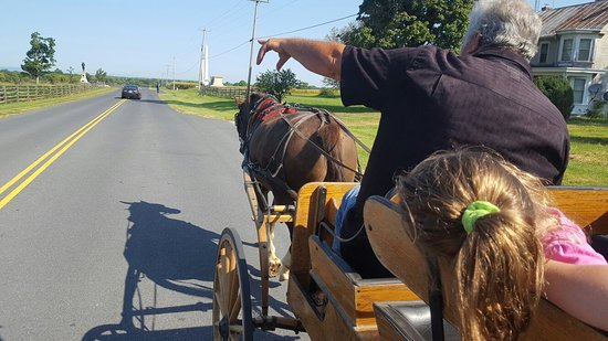 Bonnymeed Farm - Antietam Horse & Carriage Guided Tours: 20160905_102344_large.jpg