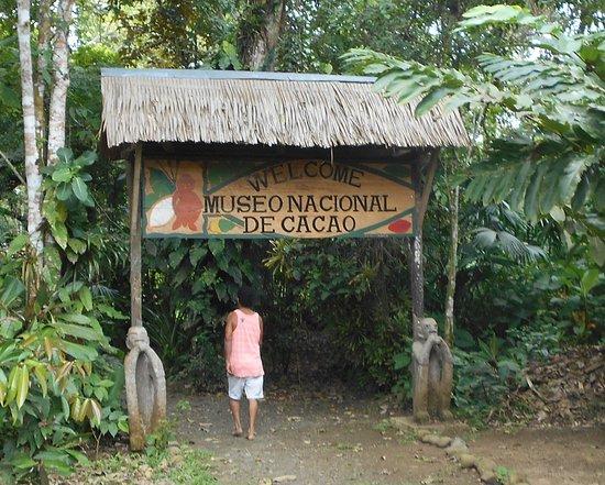 Cacao Trails Culture Tour: Museo Nacional De Cacao / Cahuita