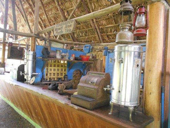 Hone Creek, Costa Rica: Museo Nacional De Cacao / Cahuita