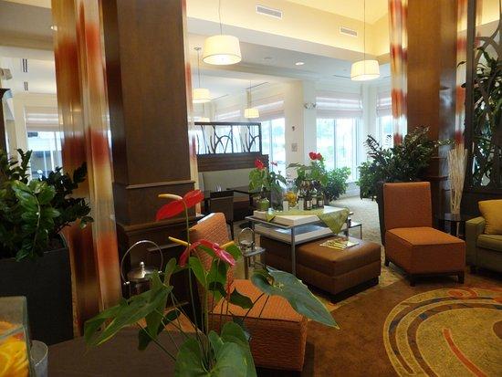 Hilton Garden Inn Devens Common Image