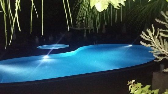 Olea Nova Hotel: Bardan Havuzun Manzarası