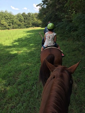 Davy Crockett Riding Stables: photo0.jpg