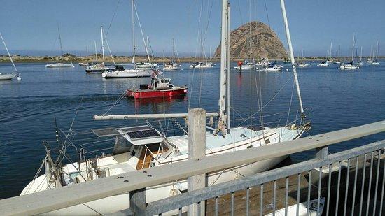 Estero Inn: IMG-20160905-WA0010_large.jpg