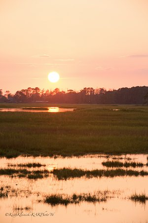 looking out toward the assateagu channel from the horse marsh that rh tripadvisor co za