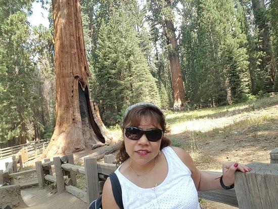 Lynwood, Califórnia: 20160822_111627_large.jpg