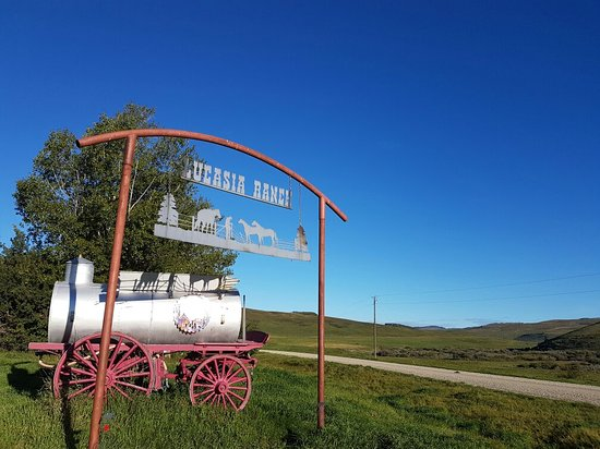 Claresholm, Canada: Lucasia Ranch Vacations