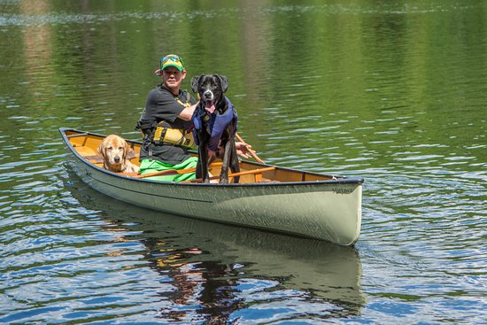 Oxtongue Lake, Kanada: Our canoes are pet friendly (Doggie PFD (Lifejackets) and packs available for rental