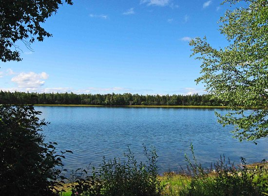 Slana, AK: View from campground. Grizzly Lake
