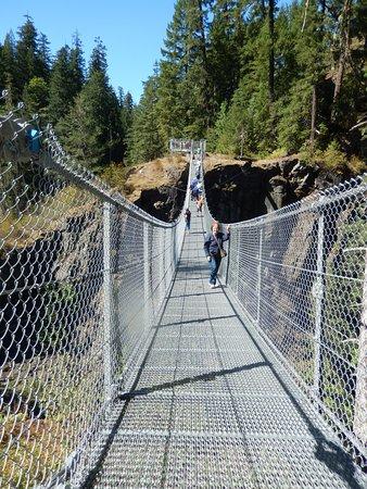 Campbell River, Canada: The suspension bridge at Elk Falls