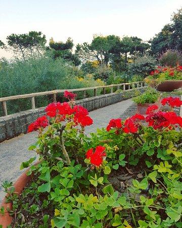 Grand Hotel Nastro Azzurro & Occhio Marino Resort: IMG_20160831_172810_large.jpg