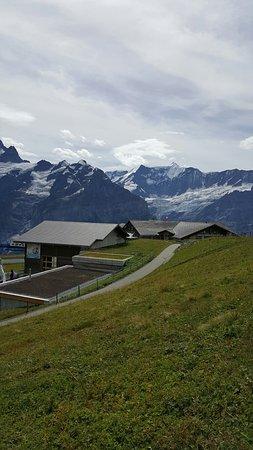 Grindelwald, Sveits: ٢٠١٦٠٩٠٤_١٢٣٢٤٠_large.jpg