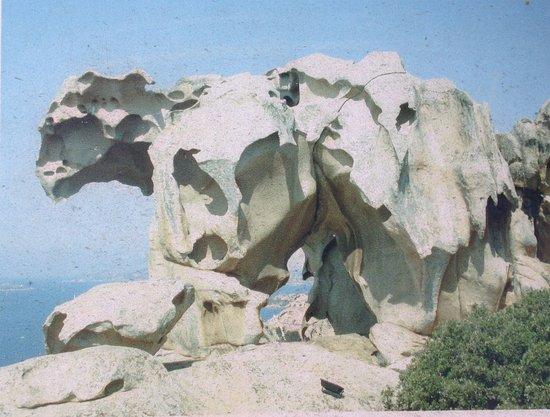 Residence Il Mirto: roccia dell'orso