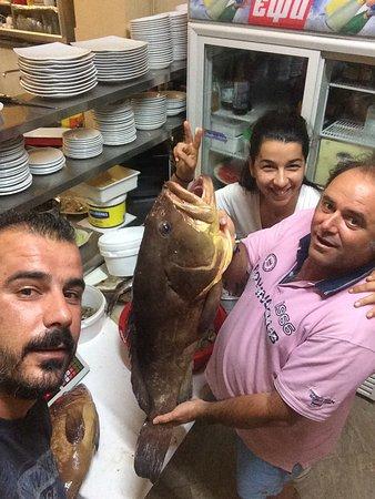Plataria, กรีซ: Ψαροταβέρνα Κοκόσης