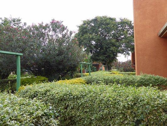 Hotel Muhabura : Lovely green areas surrounding the rooms