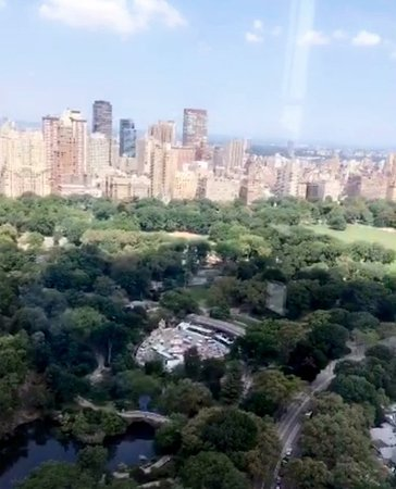 The Pierre A Taj Hotel New York View Overlooking Central Park From