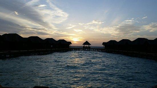 Fihalhohi Island Resort: IMG_20160905_225754_large.jpg