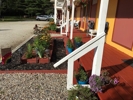 Londonderry, VT: Adorable retro Vermont motel that is pet friendly. Loved all the flowers.