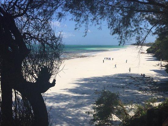 The Baobab - Baobab Beach Resort & Spa: 500 meters of golden beach front!
