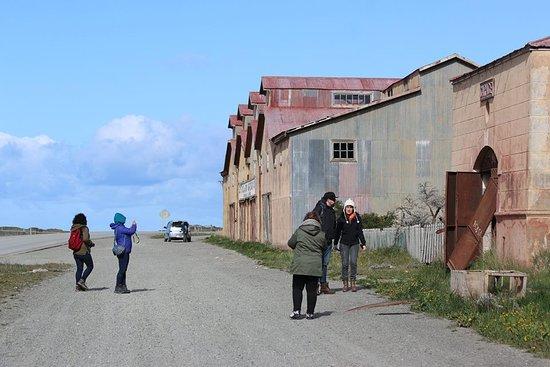 Tierra del Fuego, Chile: Estancia San Gregorio