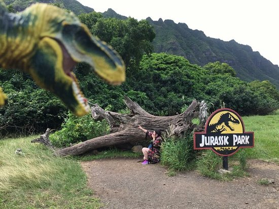 Kaneohe, هاواي: My daughter & I did the VIP Movie Site Tour & it was amazing. Small group in a very comfortable 